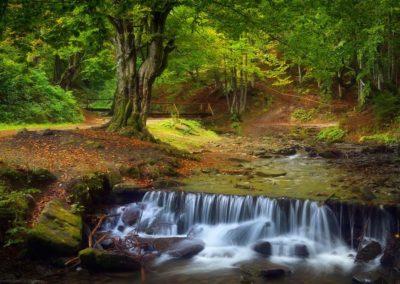 Фото Водопада Шипот Карпаты