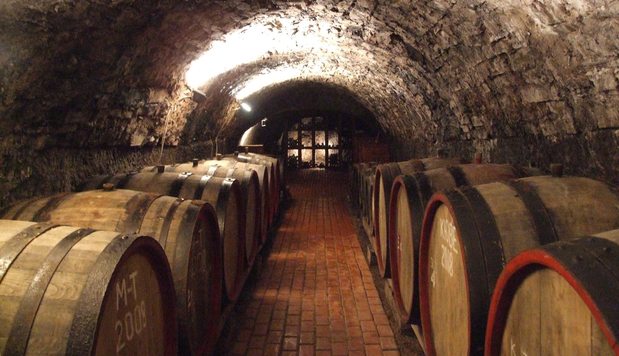 Vynnyy lʹokh Berehovo