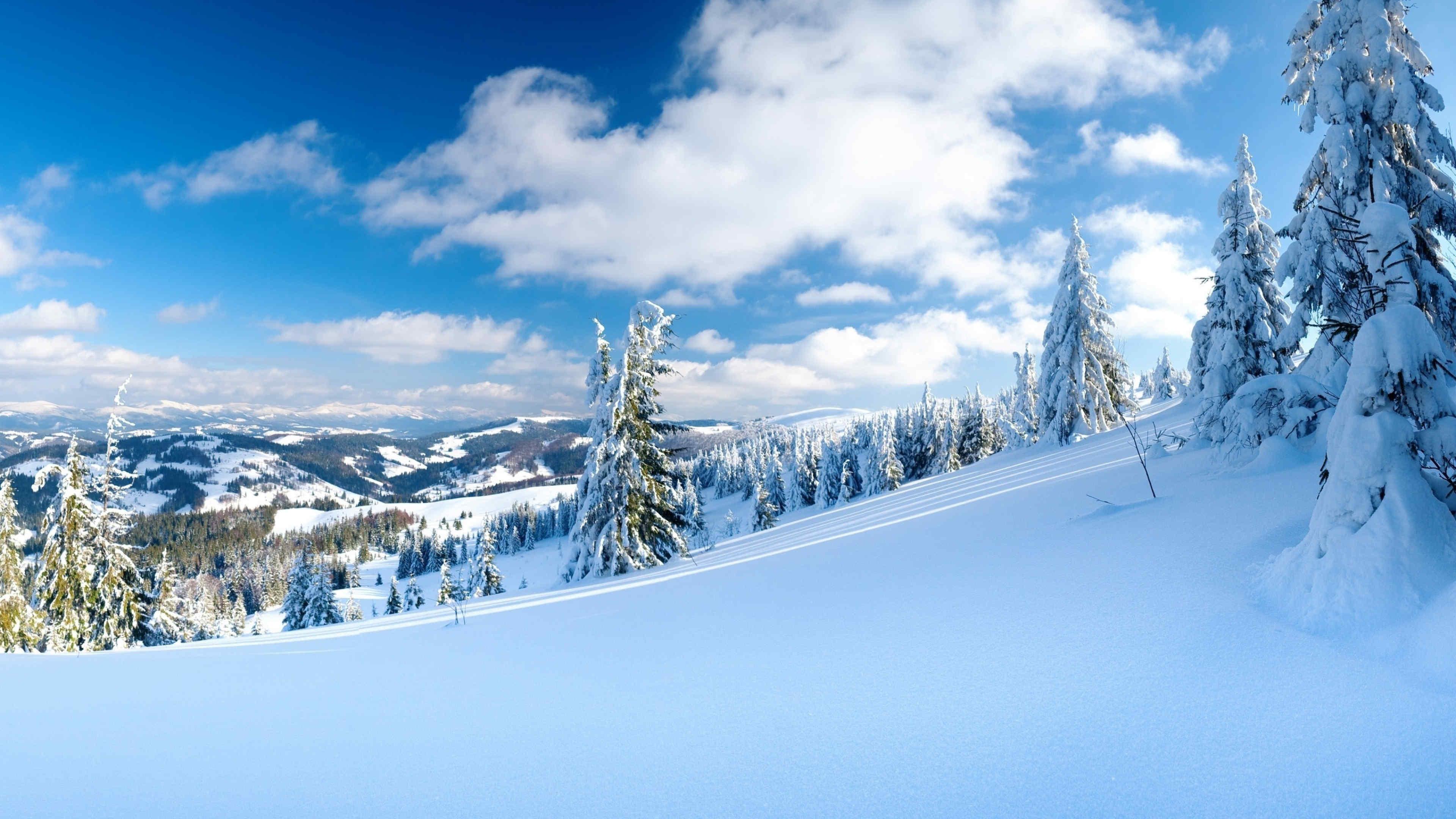 Карпаты зима