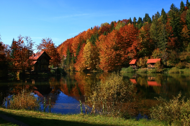 Карпаты осень